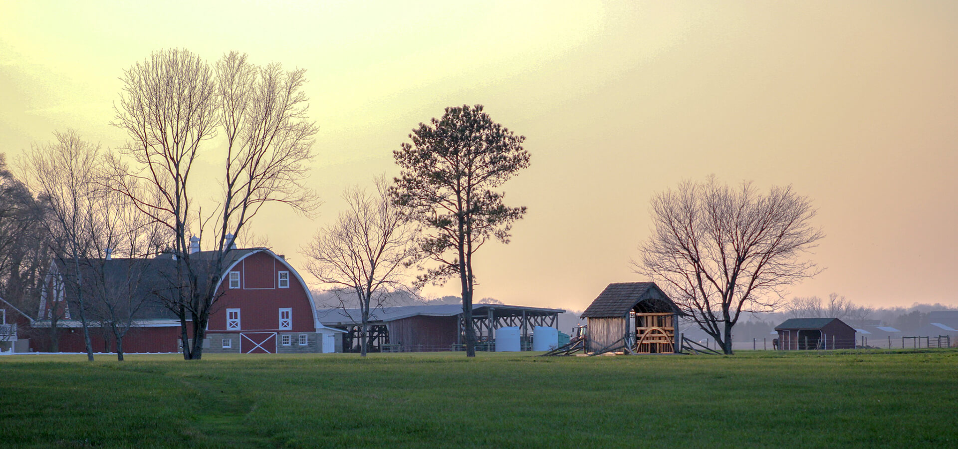 Banner - About The Farm - 1